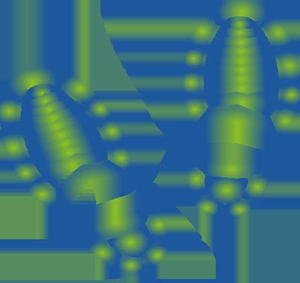 דפנה-דנון-ושאים_0004_Vector-Smart-Object